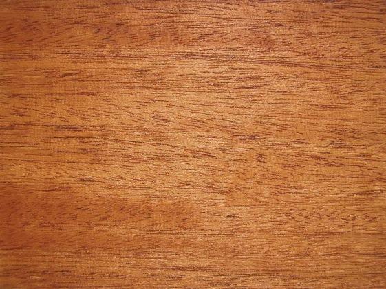 Interior Wood Panelling